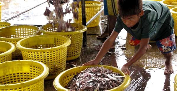Niño trabajando en Tailandia Mahachai