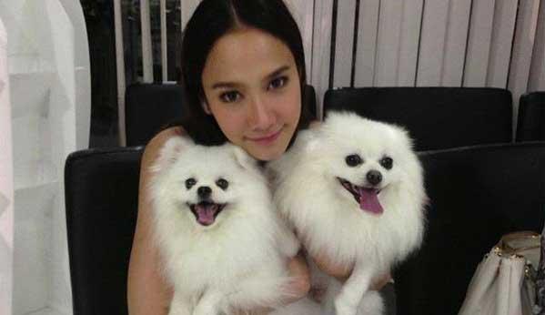 Actriz Tailandia perro pomeranio