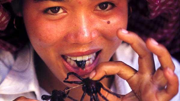 comer insectos en Tailandia